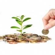 بهکارگیری هنرهای دستی، آموزش، خدمات و سرمایه گذاری در بازارهای مالی از جمله راهکاریی برای کسب پول بیشتر میباشند.