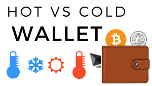 Hot or Cold wallet