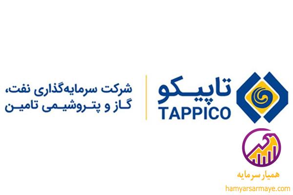 گزارش بنیادی تاپیکو